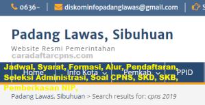 Pengumuman CPNS Kabupaten Padang Lawas 2021 Lulusan SMA SMK D3 S1 S2