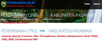 Pengumuman CPNS Kabupaten Pasaman 2021 Lulusan SMA SMK D3 S1 S2