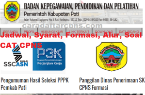 Pengumuman Hasil SKB CPNS Kabupaten Pati Formasi 2019