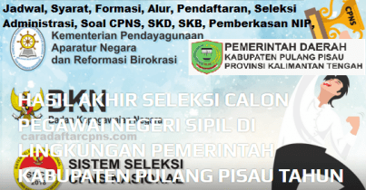 Pengumuman CPNS Kabupaten Pulang Pisau 2021 Lulusan SMA SMK D3 S1 S2