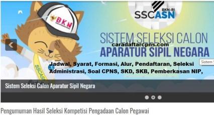 Pengumuman CPNS Kabupaten Tanah Bumbu 2021 Lulusan SMA SMK D3 S1 S2