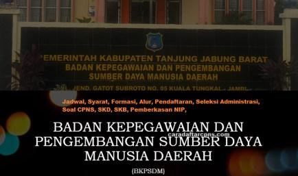Pengumuman CPNS Kabupaten Tanjabbar 2021 Lulusan SMA SMK D3 S1 S2