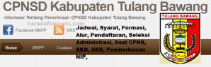 Pengumuman Hasil SKB CPNS Kabupaten Tulang Bawang Formasi 2019