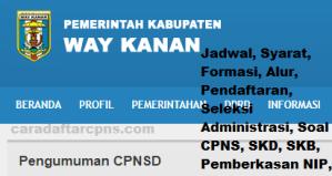 Pengumuman Hasil SKB CPNS Kabupaten Way Kanan Formasi 2019