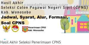 Pengumuman Hasil SKB CPNS Kabupaten Wonosobo Formasi 2019