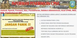 Pengumuman CPNS Kabupaten Anambas 2021 Lulusan SMA SMK D3 S1 S2