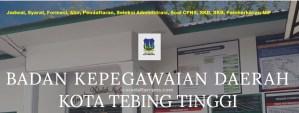 Pengumuman Hasil SKB CPNS Pemkot Tebing Tinggi Formasi 2019