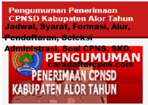 Pengumuman Hasil SKD SKB CPNS Kab Alor 2019 2020