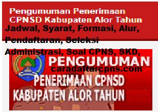 Pengumuman CPNS Kabupaten Alor 2021 Lulusan SMA SMK D3 S1 S2
