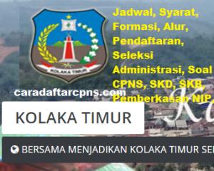 CPNS 2019 Kabupaten Kolaka Timur