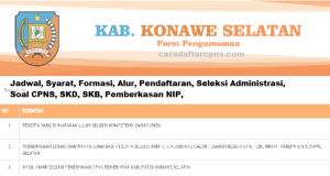CPNS 2019 Kabupaten Konawe Selatan