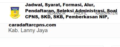 Pengumuman CPNS Kabupaten Lanny Jaya 2021 Lulusan SMA SMK D3 S1 S2