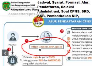 CPNS 2019 Kabupaten Luwu Utara