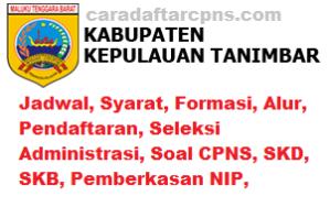 CPNS 2019 Kabupaten Maluku Tenggara Barat