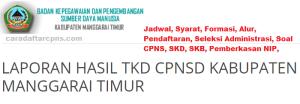 CPNS 2019 Kabupaten Manggarai Timur