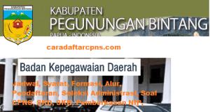 Pengumuman CPNS Kabupaten Pegunungan Bintang 2021 Lulusan SMA SMK D3 S1 S2