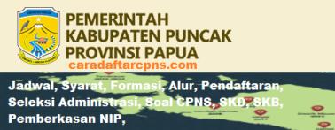 Pengumuman CPNS Kabupaten Puncak 2021 Lulusan SMA SMK D3 S1 S2