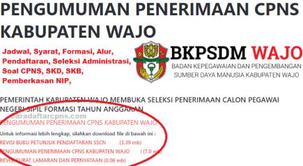 Pengumuman CPNS Kabupaten Wajo 2021 Lulusan SMA SMK D3 S1 S2