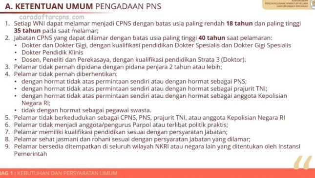 Pendaftaran CPNS dan PPPK 2021 Segera Dibuka