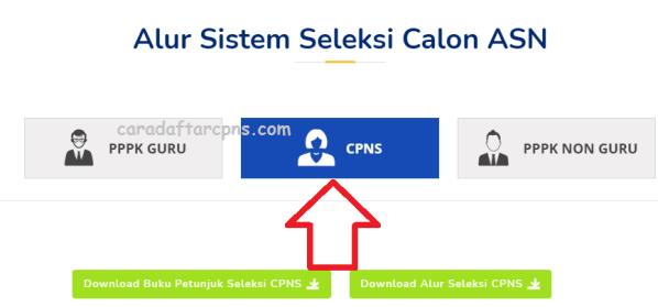 Alur Pendaftaran Seleksi CPNS 2021