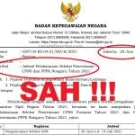 Jadwal Pendaftaran Seleksi CPNS dan PPPK 2021 Resmi