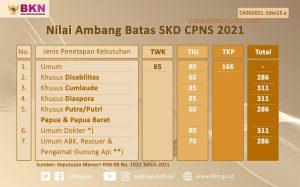 Passing Grade CPNS 2021