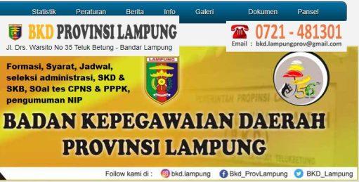 Hasil Seleksi Administrasi CPNS Pemprov Lampung 2021