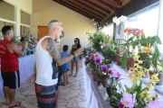 Exposição de Orquídeas reúne cerca de 3 mil visitantes