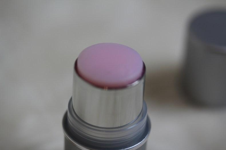 Pur cosmetic cara lynn blog