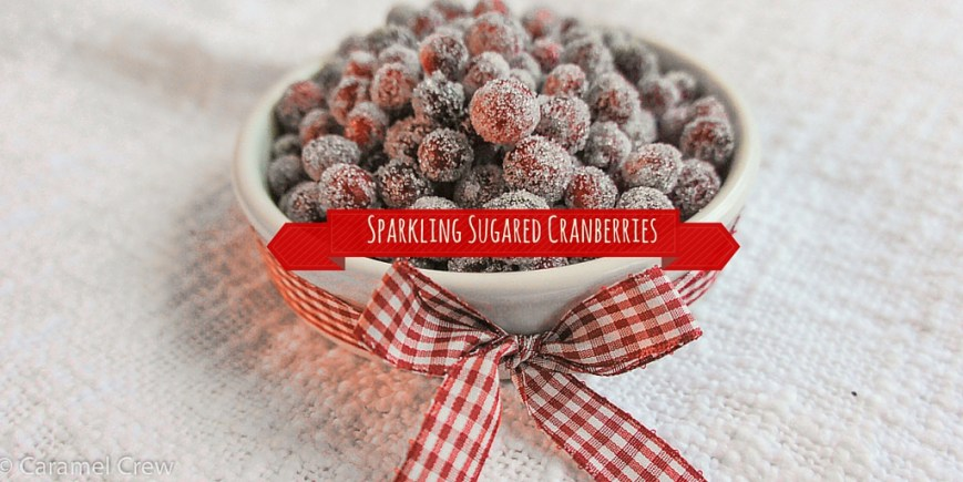 A simple sugared cranberries recipe - get perfectly sparkling, sugar-frosted, crunchy frosted cranberries that are a delight to eat and look at. A super easy snack idea and a fun edible gift!