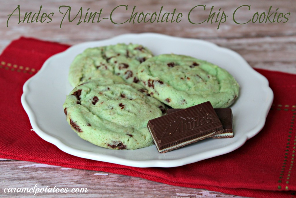 Andes-Mint-Chocolate-Chip-Cookies-1024x686