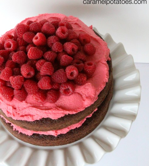 Chocolate layer cake with Raspberry Frosting
