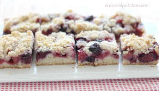 summer berry crumb bars 077