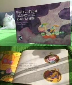 Kako je Raša nadmudrio kišni dan - knjiga za decu