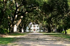 LOUISIANEIMG_1098