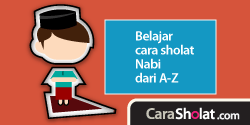 carasholat.com