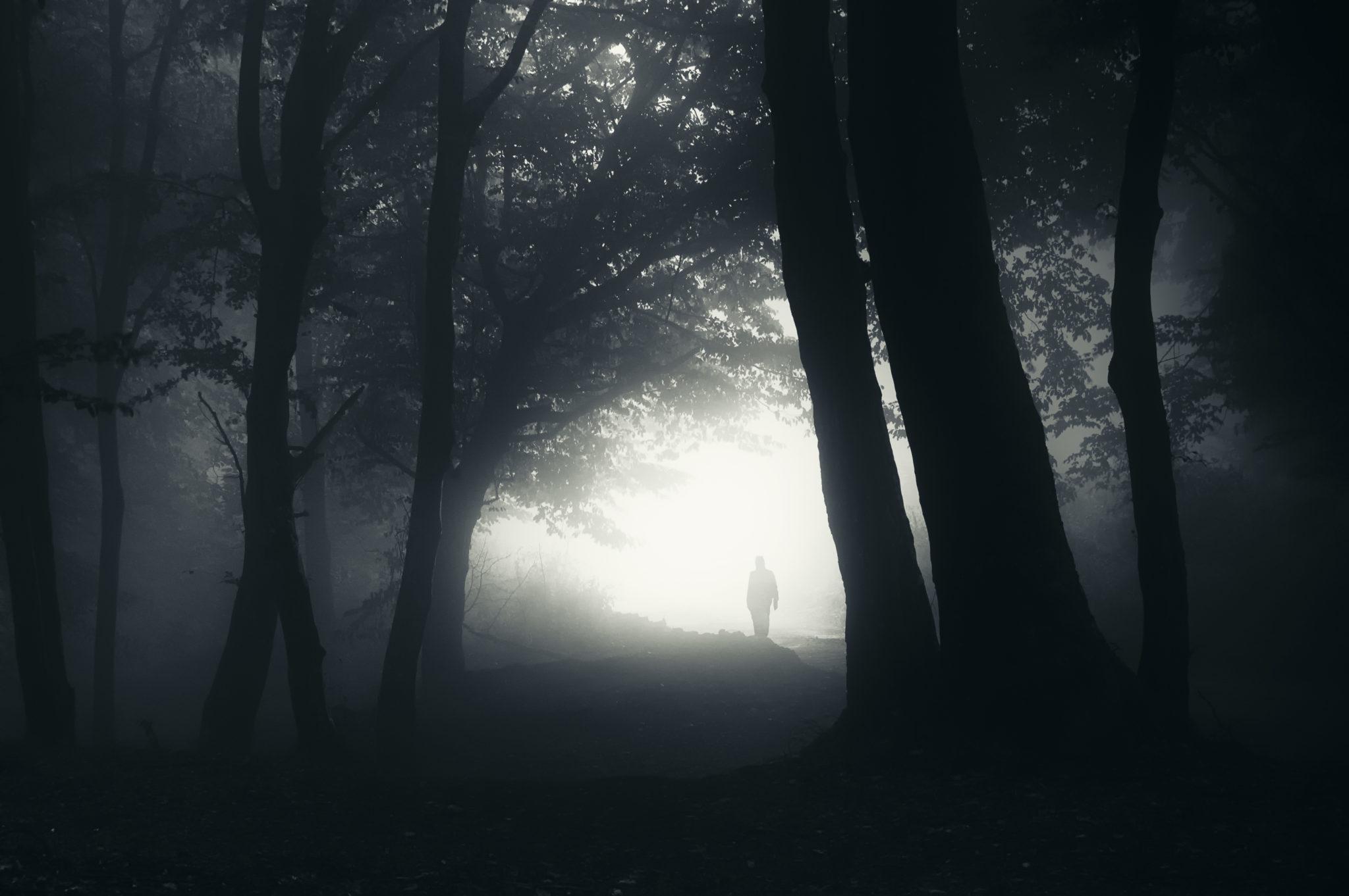 Serbia centrale, un villaggio sterminato dai vampiri