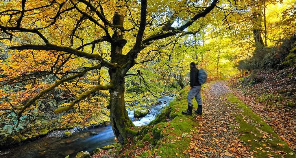 Parque Somiedo, Asturias