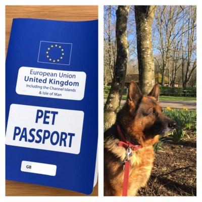 Pet passport EU travel