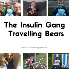 Adventures of the Insulin Gang Travelling Bears