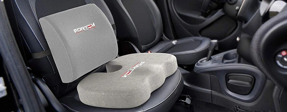 the best lumbar support for car review