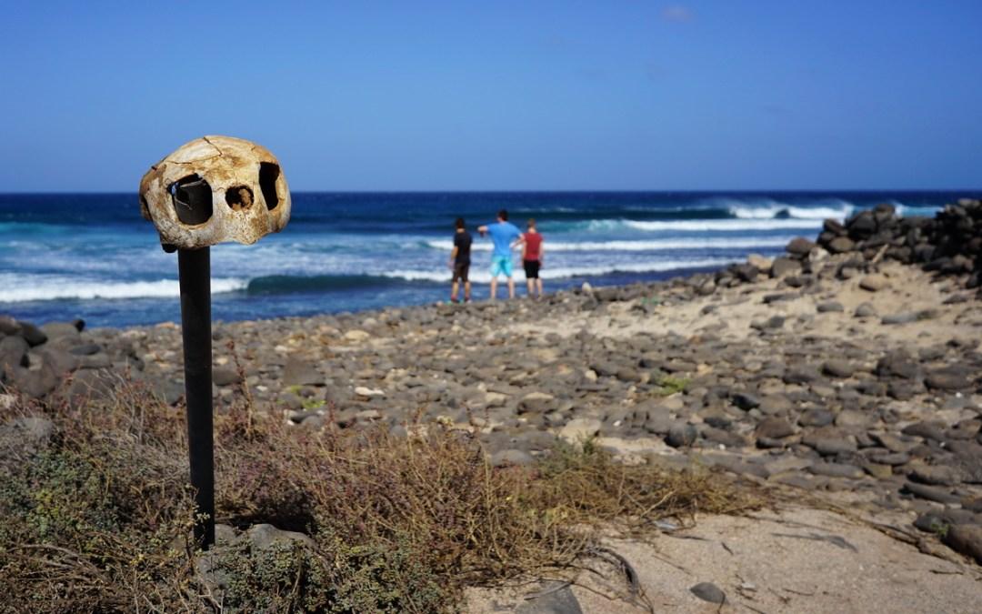 Swedish windsurf crew score Cabo Verde!