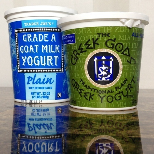 Full Fat Yogurt and Greek Yogurt for Tsatsiki Dip