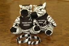 carcinoid stuffed zebra & bracelet