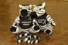 ShowYourStripes_clip_image006