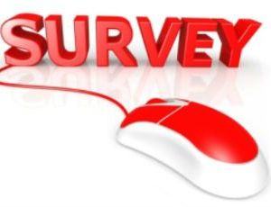 Survey, with computer mouse_Twitter, smaller