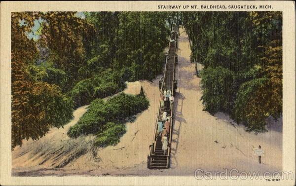 Stairway Up Mt Baldhead Saugatuck MI