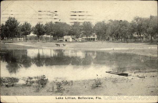 Lake Lillian Belleview FL