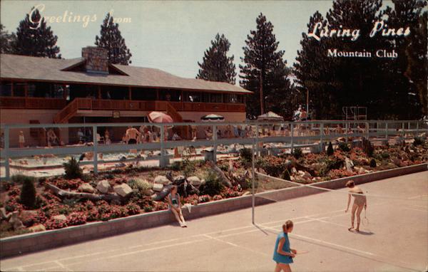 Luring Pines Mountain Club Running Springs CA