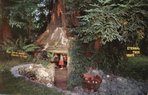 Eternal Tree House Redcrest CA